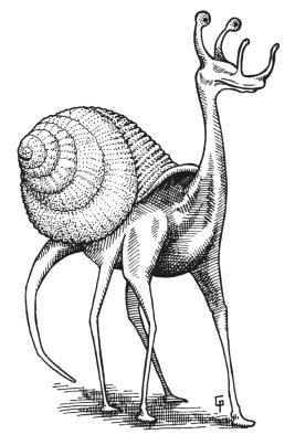 Un escargot quadrupède.