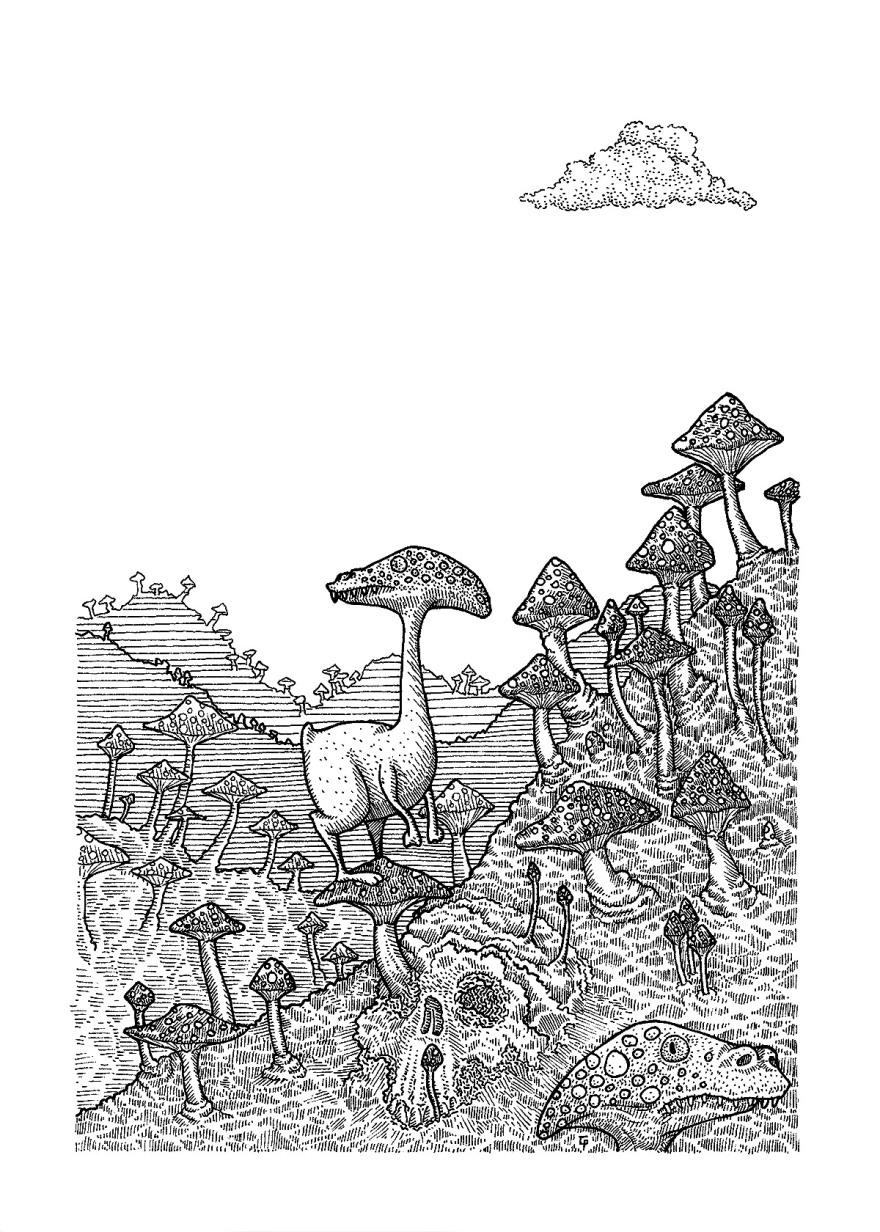 201707_01_champignons_01_1200px